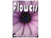 DVD Doku - Flowers Minutes of Re...